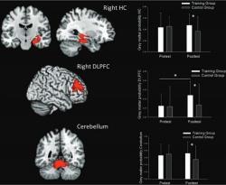 Видео игрите са полезни за мозъка