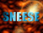 SNEeSe logo